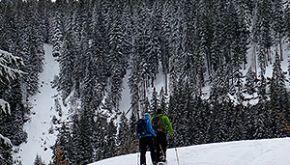 Schneetour Schwarzwald