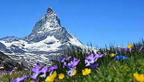 Region Schweiz